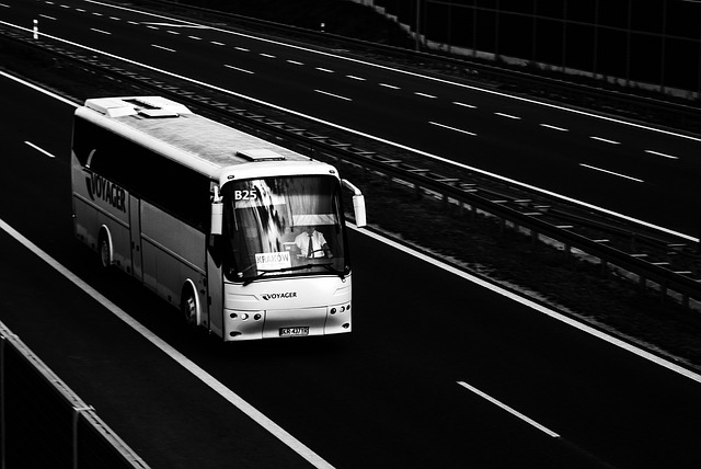 autobus, silnice